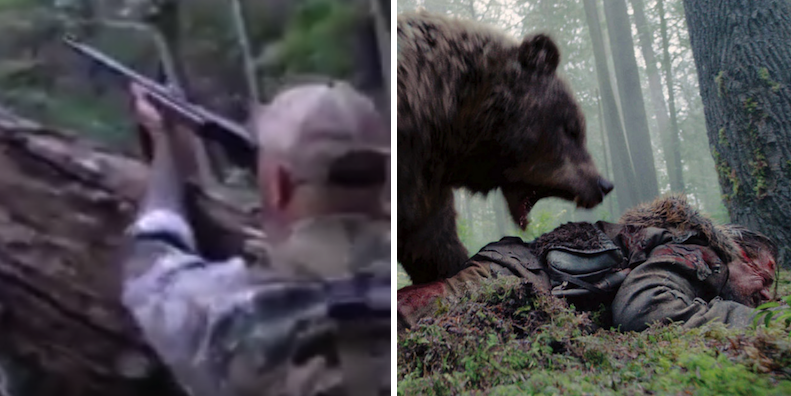 Black Bear Gets Shot Out Of Tree, Attacks Hunter Who Thought He Was Dead