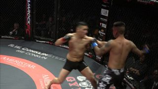 MMA Fight Ends in Jaw-Dropping Fashion With Rare Double Knockout