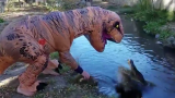 Idiot Decides To Dress Up In A T-Rex Costume To See How An Alligator Would Respond