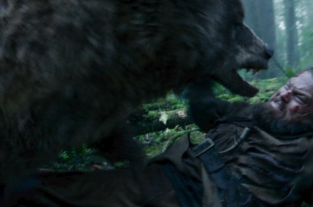 Having a bear bearing down on ya would be bloody unbearable (OMG I'm so sorry for that one, guys!)
