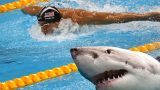 Michael Phelps Races A F*cking Great White Shark To See Who Is Faster