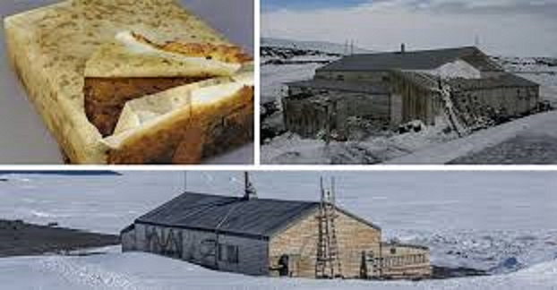 Check Out This 106 Year Old 'Perfectly Preserved' Fruitcake Found In Antarctica