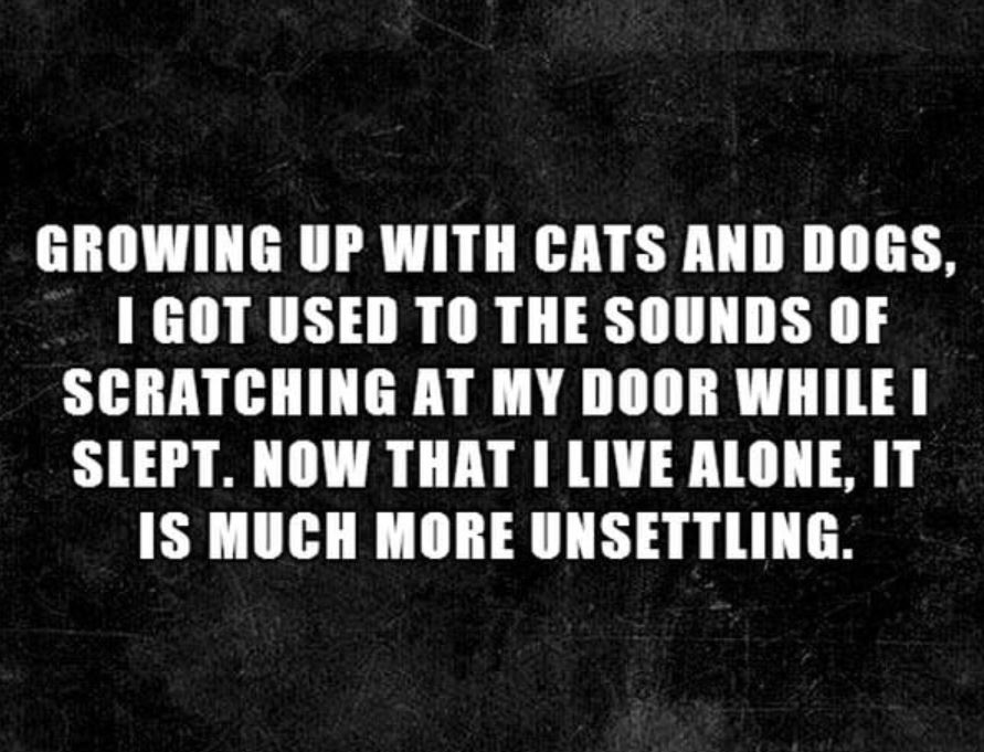 Makes me think of Lovecraft's Classic, The Rats in the Walls. This dude's totally ending up dead or insane. Credit: 9gag.com