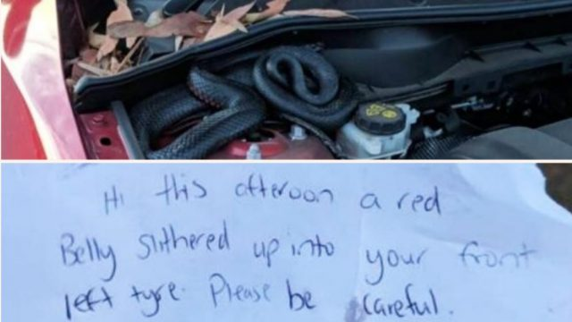 Aussie Bloke Returns To Car And Finds F*&ken Scary Note