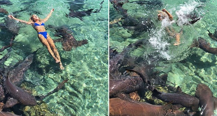 Instagram model bitten by sharks while trying to take pictures