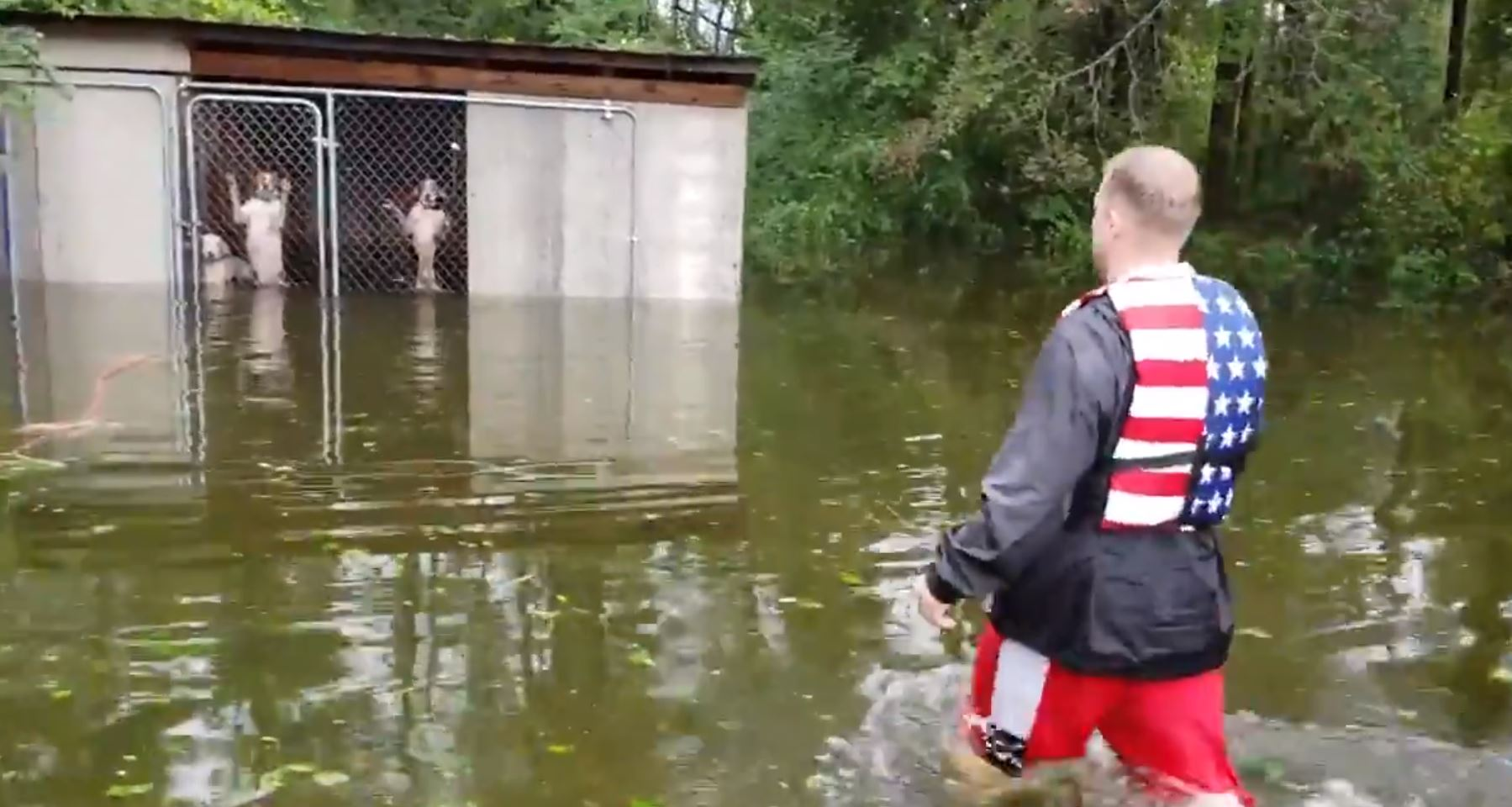 F*cken legend saves dogs from certain death in hurricane florence floodwaters