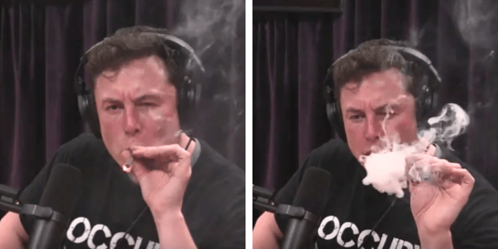 Tesla billionaire Elon Musk gets blazed with Joe Rogan