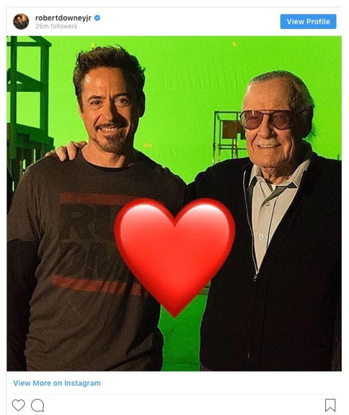 Credit: Instagram/Robert Downey Jr