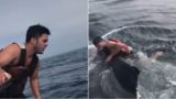 Fisherman jumps on entangled whale's back, cuts it free