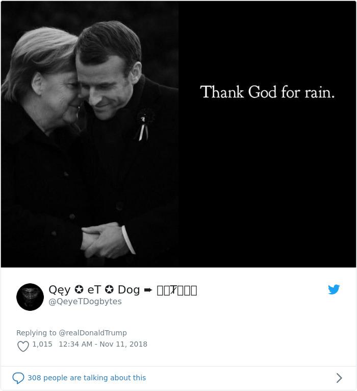 Credit: QeyeTDogbytes