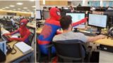 Bloke quits his job and turns up dressed as Spider-Man for last day