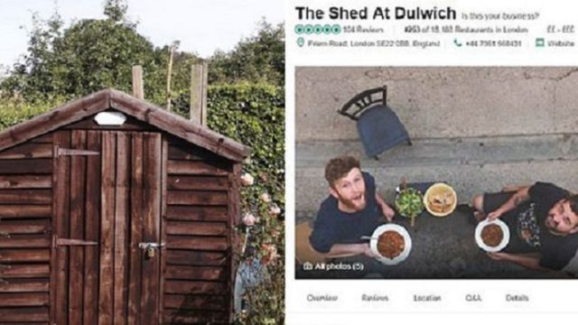 """""""I made my shed the top rated restaurant on Trip Advisor"""""""