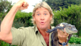 Today's Google Doodle pays tribute to the late Steve Irwin on 57th Birthday