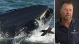 Bloke who got swallowed by a whale explains how he got out
