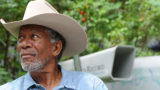 Morgan Freeman has dedicated his huge home to help save the existence of bees