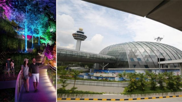 The world's best airport has a f***en rainforest inside!