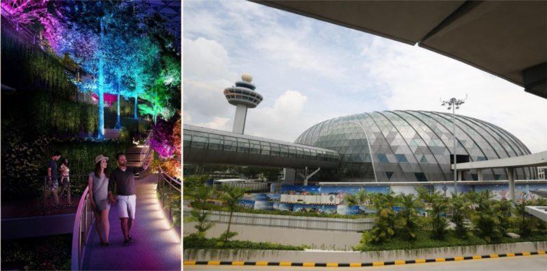 The world's best airport has a f***en rainforest inside!