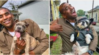Legend UPS driver who takes photos with the dogs on his route