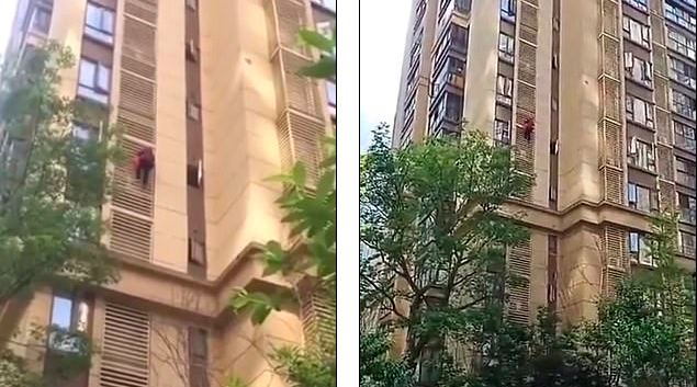 Grandma with Alzheimer's climbs down the outside of apartment building