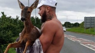 Bloke in his undies jumps into freezing cold lake to save deer