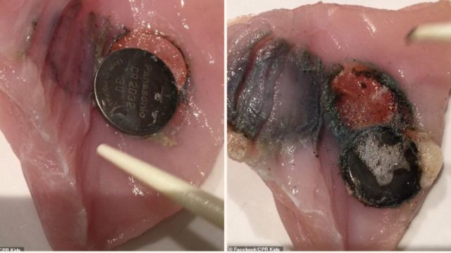 Battery experiment proves how f**ked your insides are if swallowed