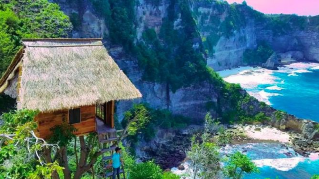 This stunning treehouse in Bali is a bloody bargain for just $50 per night