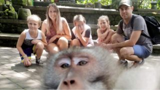This Cheeky monkey photobombs a family photo and flips them the bird!