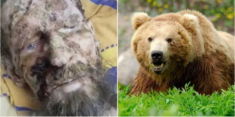 'It kept me to eat later': Claims Russian rescued after spending a month inside a bear den