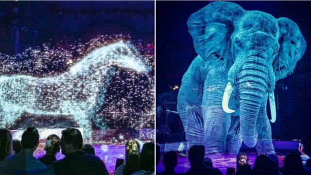 German circus uses holograms instead of live animals to combat animal cruelty