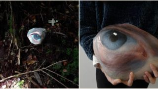 Sheila paints eyes on rocks and leaves 'em where they'll freak people out