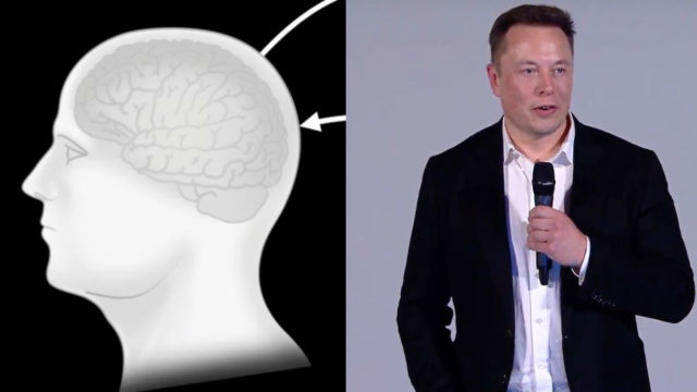 Elon Musk reveals his plan to 'merge' human brains with AI