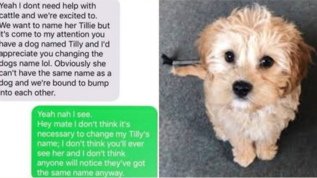 Pregnant Mother demands woman change her dog's name to use it for her daughter