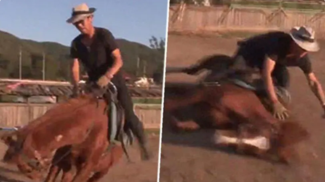 This dramatic horse plays dead when anyone attempts to to ride it