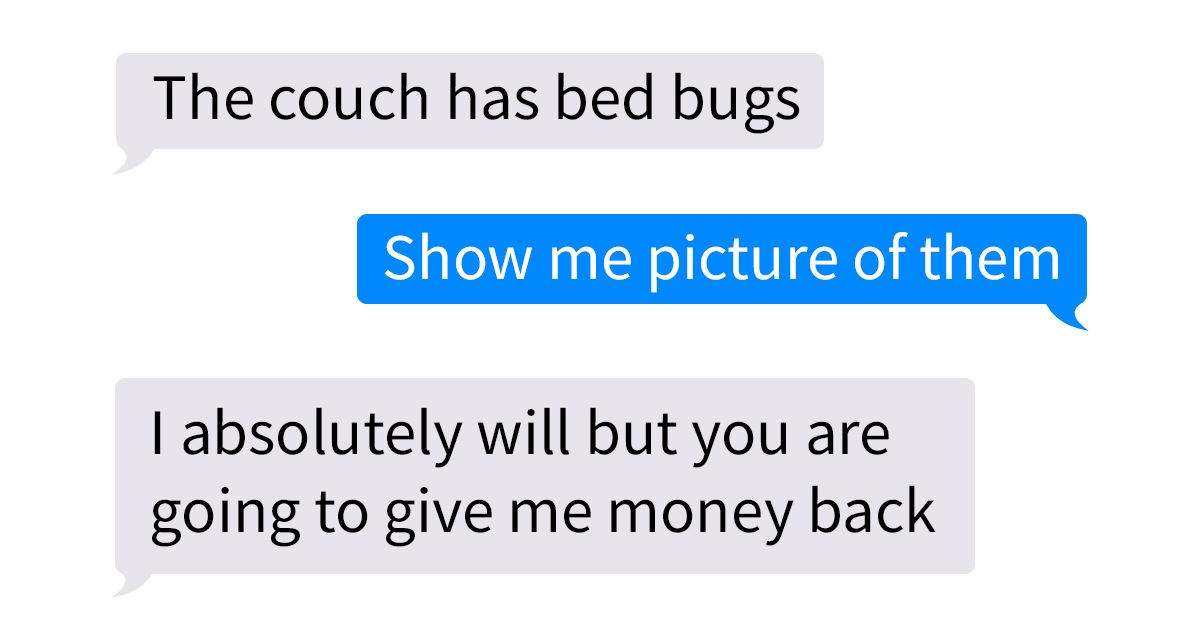 """Single Mum"" tries to scam person she bought couch from with fag bugs, backfires beautifully"