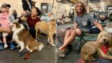 Aussie Navy sets up ship to house families with pets who lost homes in bushfires