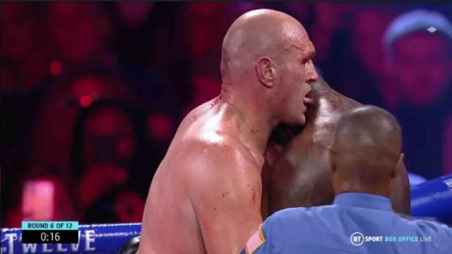 Footage shows Tyson Fury licking Deontay Wilder's Blood in the middle of fight