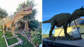 'Toy dinosaur' gets delivered by crane after Dad orders wrong size online