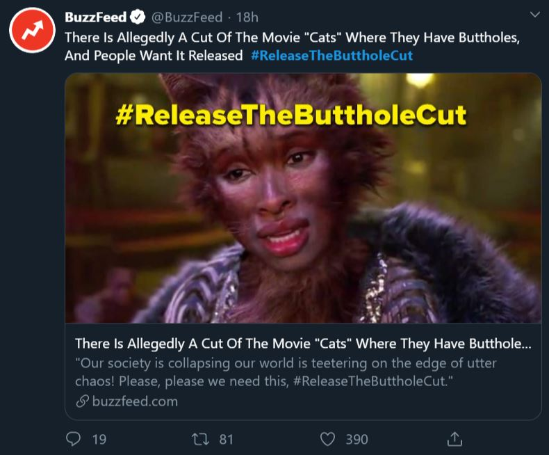 People Are Going Mental Over The Buttholecut Of Cats