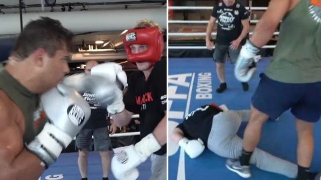 UFC title contender Paulo Costa KO's Logan Paul in sparring session