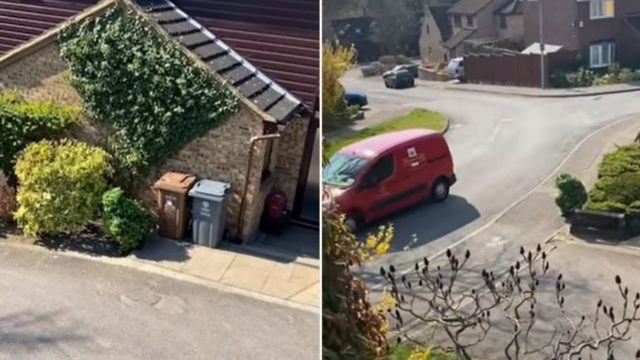 UK couple catch their neighbour dressing up as a shrub to escape lockdown