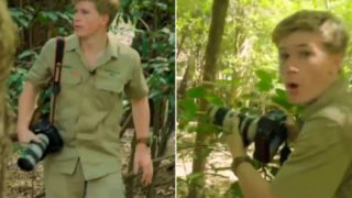 Robert Irwin follows Dad's footsteps and captures incredibly rare species on film