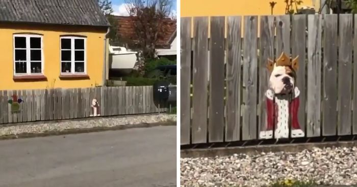 Legends paint costumes on fence after discovering their dog loves to stare through fence