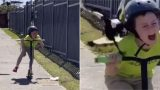 Aussie kid's encounter with relentless swooping magpie is brutal