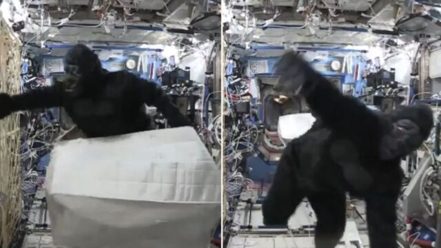Astronaut terrorises international space station in monkey suit!