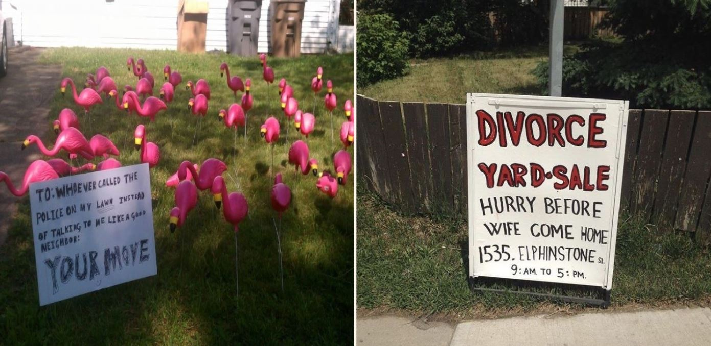People share some gold photos of their neighbours