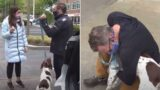 News reporter bumps into dog thief while reporting the story