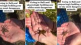 Tiktok user unknowingly held the world's most venomous octopus while in Bali