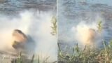 Video shows smoke pouring from Alligator after eating a drone